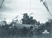 NEW GUINEA CAMPAIGN January 1942 - September 1945